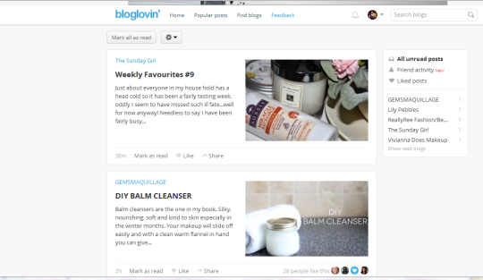 How Bloglovin' looks on the computer